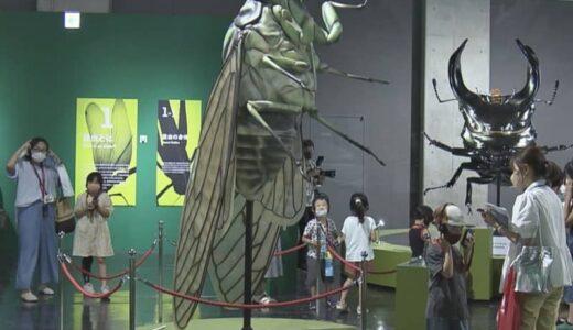 """""""Gの部屋""""は世界から集められたアレが…昆虫の生態などが学べる特別展 17日から開催 名古屋市科学館"""